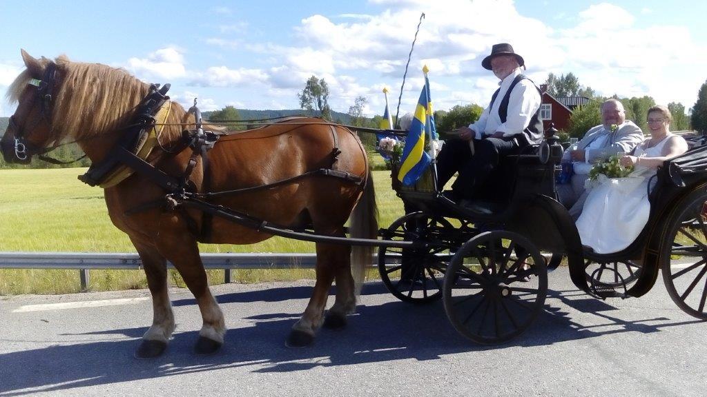 skollingas hästurer_lokes