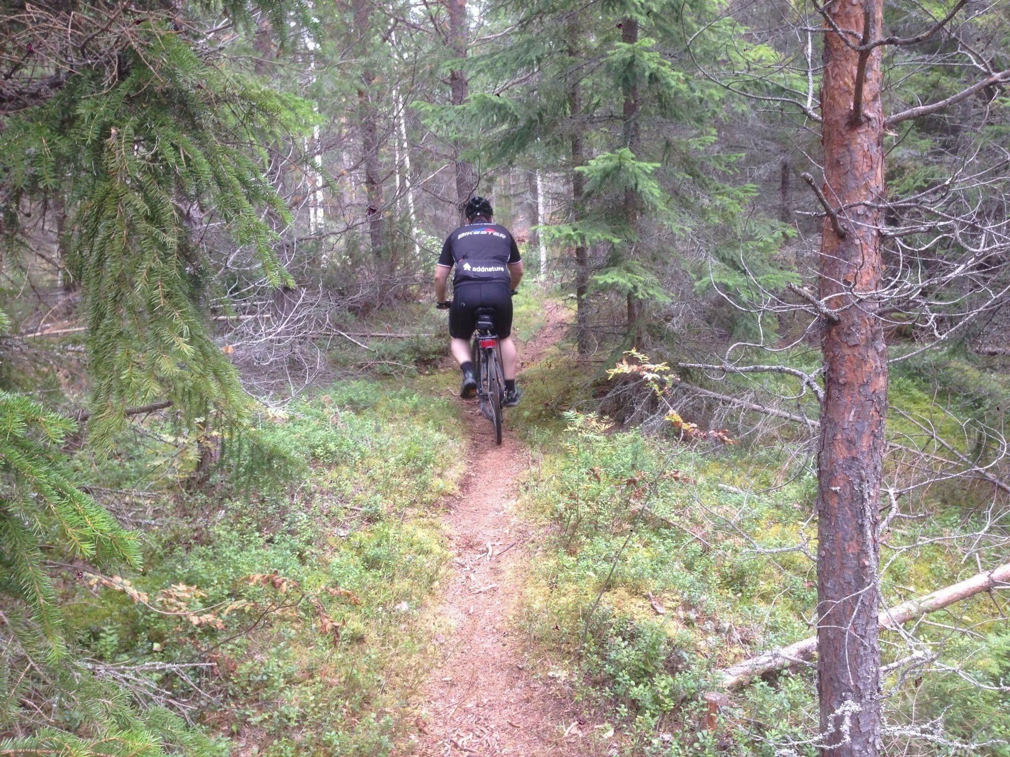 Cross country cykelled i Järvsö