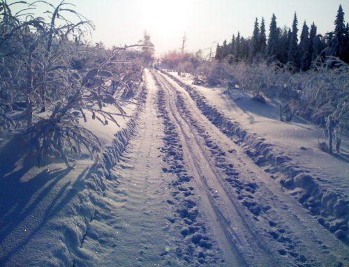 Paradis för längdskidåkning