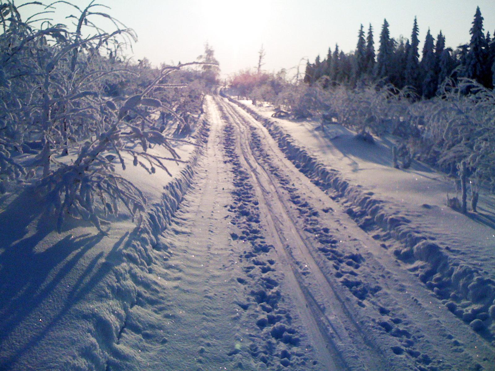Harsa – ett paradis för längdskidor med massor med mil av skidspår.