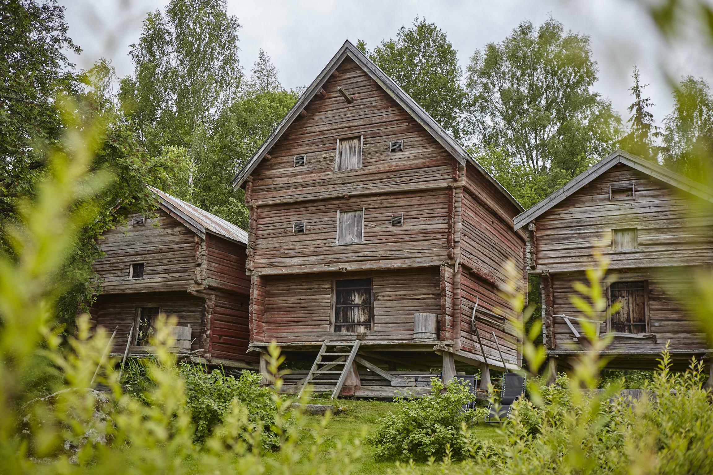 De tre härbrena på Lôkes Hälsingegård från 1500-, 1700- och 1800-talet